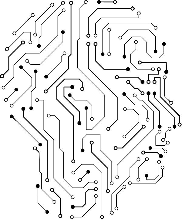 cervello immagine